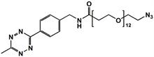 Picture of Methyltetrazine-amino-PEG<sub>12</sub>-azide