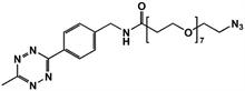 Picture of Methyltetrazine-amino-PEG<sub>7</sub>-azide