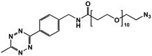 Picture of Methyltetrazine-amino-PEG<sub>10</sub>-azide
